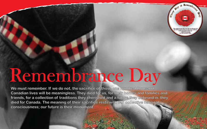 Rememtrance Day poster, soldier in Wild poppy field